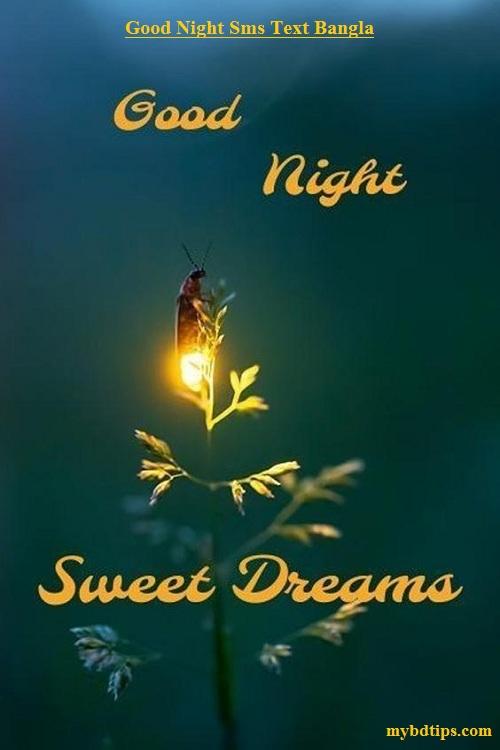 Good Night Sms Text Bangla Good Night Sms Bangla
