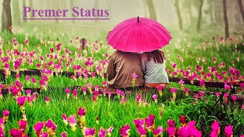 Premer Status