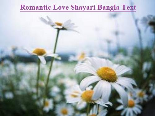 Romantic Love Shayari Bangla Text
